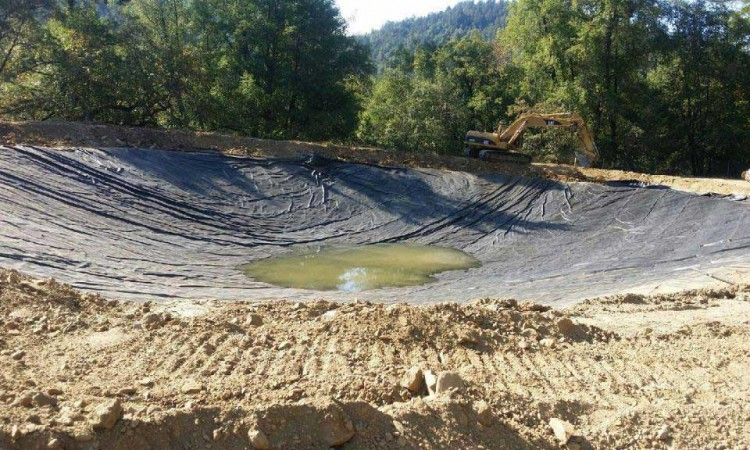 ROTR French's Camp Pond Liner